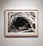 A Hollow - installation/framed view, 2013 by Andrew Browne