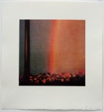Rainbow, 2009 by Andrew Browne